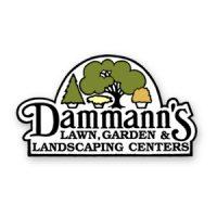 Dammann's